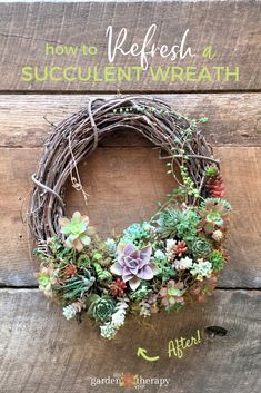 How to Refresh a Succulent Wreath - if you have a succulent wreath, it may need a little maintenance to freshen it up! #gardentherapy #succulents
