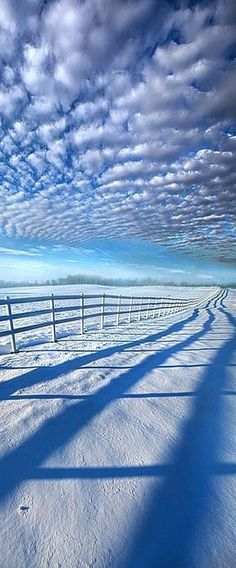 Always Whiter On The Other Side Of The Fence -- Wisconsin Horizons #by Phil Koch