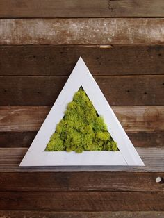 Triangle Wall Art with Reindeer Moss Geometric Wall by surfacePDX