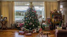 Todo lo que debes saber sobre los árboles de Navidad - http://www.jardineriaon.com/todo-lo-que-debes-saber-sobre-los-arboles-de-navidad.html #plantas