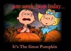 charlie brown halloween bing images snoopy peanuts pinterest charlie brown halloween charlie brown and brown - Charlie Brown Halloween Abc