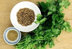 Coriander, also known as Cilantro, is a natural herb used extensively in many culinary dishes. Besides its pleasant aroma, it offers many health benefits and Coriander Oil, Coriander Cilantro, Ground Coriander, Fresh Coriander, Spices And Herbs, Fresh Herbs, Cilantro Herb, Alkaline Foods, Fit Bodies
