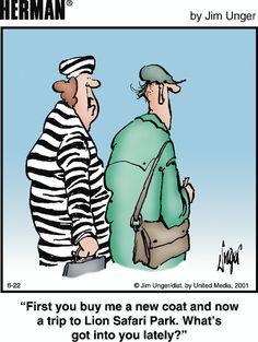 What's So Funny, Funny Memes, Hilarious, Jokes, Funny Stuff, Herman Cartoon, Herman Comic, Vintage Humor, Funny Vintage