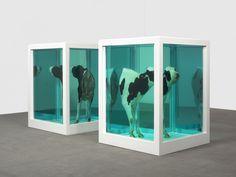 damien-hirst-loves-paradox-2007-photographed-by-prudence-cuming-associates.jpg 3,000×2,250 pixels