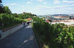 Praha - na Pražském hradě. #praha #prague #history #czech #travel #wander