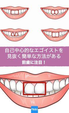 「手相」ならぬ「歯相」というものがあるのを、ご存知でしょうか?中でも前歯2本は「門歯」と呼ばれ、形状、色、大きさから、性格や行動パターンを読むことができるのだとか。 #性格診断 #簡単 #エゴイスト #見抜く #歯相 #ちえとく #為になる