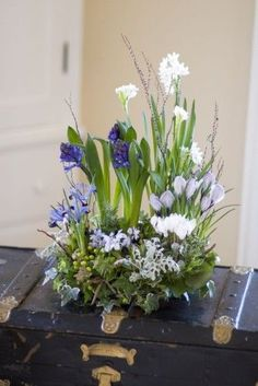 love this spring arrangement where blue hyacinth appears to be growing!