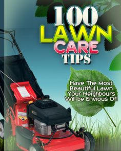 https://www.facebook.com/pages/Lawn-Care-Tips/188776787918085
