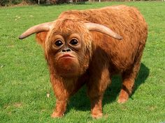freaky cow