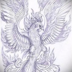 Phoenix Sketch by Phoenix Bird Tattoos, Phoenix Tattoo Design, Body Art Tattoos, Sleeve Tattoos, Crow Tattoos, Ear Tattoos, Tattoo Sketches, Tattoo Drawings, Aquarell Phönix Tattoo
