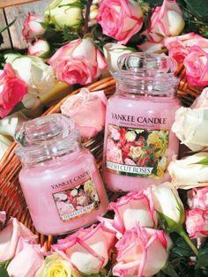 Fresh cut roses... Cette bougie est une senteur typiquement fleuri que je trouve plutôt bien réussi pour Yankee Candle. Elle sent en effet les fleurs douces et réconfortantes