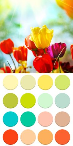 Spring landscape color palette for seasonal theory Spring color type