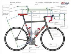 Bike Position Road