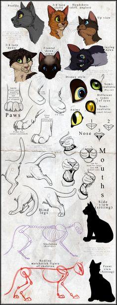 Feline reference sketches by *NinjaKato on deviantART: