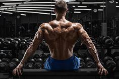 Workout のストック写真、ロイヤリティフリーの画像、ベクター、およびビデオ Best Workout Music, Workout Mix, Gym Motivation Music, Fitness Motivation, Chest Workouts, Fun Workouts, Chest Exercises, Body Training, Training Tips