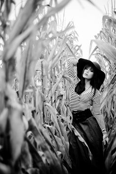 Who knew a cornfield could look so cool?