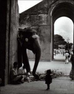 Thanjavur, photo, Françoise Nuñez