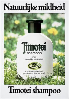 Image result for 80s timotei