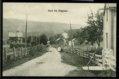 Sør-Trøndelag SINGSAAS. Godt lokalmotiv . Postgått 1912