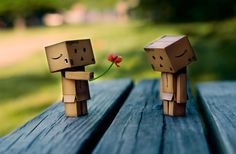 Danbo gives love and a flower Danbo, Miss Piggy, Box Robot, Robot Art, Amazon Box, Cute Box, Jolie Photo, Little Boxes, Creative Photography