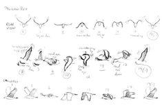 bird wing flap reference - Google 검색