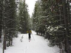 Jackson Peak | Jackson Hole, Wyoming Ski Adventure