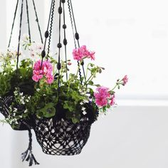 Hanging baskets from dyed crocheted doilies. Air Plants, Indoor Plants, Air Plant Display, Summer Plants, Macrame Plant Hangers, Hanging Baskets, Cool Diy, Home Decor Inspiration, Handicraft