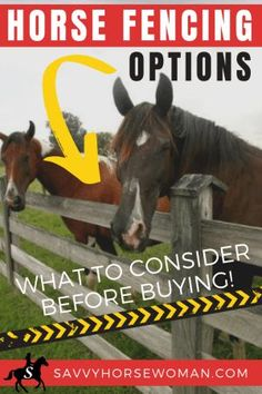 Horse Fencing Options: What To Consider Before Buying - Savvy Horsewoman Equestrian Outfits, Equestrian Style, Equestrian Problems, Equestrian Fashion, Horse Care Tips, Types Of Horses, Horse Property, Horse Barns, Horse Stalls