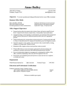 It Auditor Resume Awesome Auditor Resume Examples  Httpexampleresumecvauditorresume .