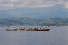 Rwanda is situated in the region of Great Lakes and has many beautiful and…