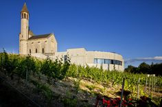"""Electric Bike Tour and Wine Tasting from Nice This tour offers an original way of discovering a winery. The unique Vineyard located in the City and dated from the Roman's time is where you will visit the Old cellars and taste the 3 local wines produced: White, Rosé and Red. You could also book in option for a local specialties food buffet for an additional fee. (minimum 6 guests to book buffet)On this Tour from NICE Center, you will first pass along the Sea on the """"Engl..."""