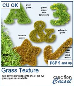 You can now create your own patch of grass in any shape you want, whether it is a simple circle, or in the shape of a letter, a number or any other.  You get 5 options for the grass (green, green with dandelions, yellowish, brownish or brownish with dried leaves), and four lengths for the grass (no lawnmower needed).  You get the seamless pattern for the grass and also some picture tubes that you can also use on their own for other projects.  Compatible with PSP9 and up. Scrapbook Supplies, Scrapbooking, Graphic Projects, Dandelions, Psp, Some Pictures, Create Your Own, Grass, Patches