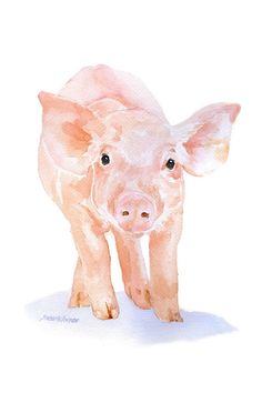 Pig is a giclée print of my original watercolor painting. Measures 4 x 6. Printed on 260 g/m2 fine art paper using archival pigment inks. This high quality cotton paper makes it hard to tell the original painting from the print! This quality printing allows over 100 years of vivid color in a typical home display. Print is sent in cellophane sleeve with cardboard to protect it while shipping. Find more of my prints and cards HERE: http://www.etsy.com/shop/SusanWindsor (giclée (n): a p...