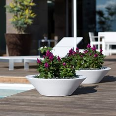Great planters!