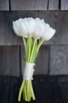 tulips: Qualities such as purity, innocence and humility are associated with white tulips. The attribute of forgiveness also is used in reference with the white color. A tulip bouquet also represents elegance and grace.