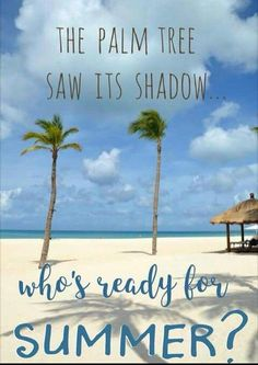 The palm tree saw its shadow. Who's ready for summer? Types Of Photography, Aerial Photography, Landscape Photography, Beach Photography, Palm Tree Quotes, Beach Humor, Tree Saw, Beach Please, Beach Quotes