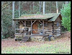 peaceful....little log cabin in the woods....