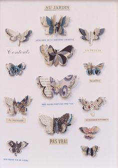 Butterflies in Edition Poshette  paper prints