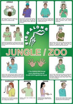 Jungle/Zoo Signs Poster - BSL (British Sign Language)Tap the link to check out great fidgets and sensory toys. Check back often for sales and new items. Happy Hands make Happy People! Simple Sign Language, Sign Language Chart, Sign Language For Kids, Sign Language Phrases, Sign Language Alphabet, Sign Language Interpreter, Learn Sign Language, British Sign Language, Makaton Signs British