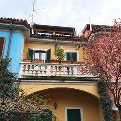 #milano #piccolamilano Milano, Pictures, Instagram, Photos, Photo Illustration, Resim, Clip Art