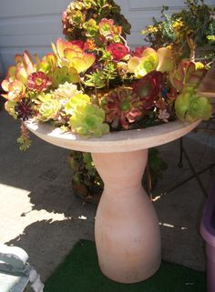Look at the gorgeous color in this succulent planted bird bath! Awesome!    By Succulent Creations by Trisha Monta