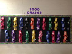 Food Chains display- This is an activity that students can display in the hall way for others to see what they are learning.