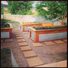 galvanized steel and cedar raised garden beds