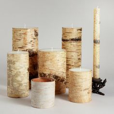 I want a mish mash of these littering my mantel (even though I don't yet have a mantel...) Birch Candles