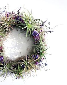 Beautiful wreath Living Wreath by robincharlotte: Made of live air plants, live Spanish moss, hand-dried seasonal purple flowers, and other subtle sparkling foliage details. Air Plant Display, Plant Decor, Succulents Garden, Planting Flowers, Flowers Garden, Air Plants, Indoor Plants, Fleur Design, Plant Projects