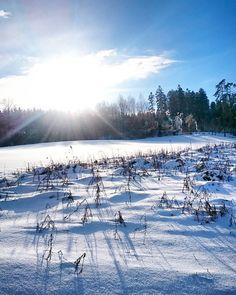 Seid ihr gut in die Woche gestartet? Auf dem Blog ist jetzt mein Montags-Update online!  Über was wir uns die letzten Tage besonders gefreut haben der schönste Job der letzten Woche oder wo es im Februar überall hingeht erfahrt ihr jetzt auf LittleCITY.ch!  #winterwonderland