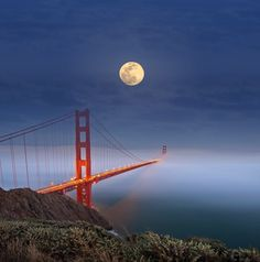 Golden Gate bridge in a fog blanket Great Places, Places To See, Beautiful Places, Landscape Photography, Nature Photography, Magic Places, Across The Universe, San Fransisco, California Travel