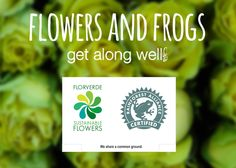 If you see these logos together on your #flowers mean you're helping communities, endangered species and workers' rights. @rnfrstalliance