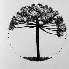 Resultado de imagem para araucaria desenho Leg Tattoos, Tatoos, Tattoo Graphic, Tattoo Project, Cool Tats, Nature Tree, Piercing Tattoo, Tattoo You, Tattoo Images