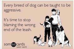 Bad training ! Bad dog !